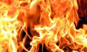 Ещё один вариант программы вводного противопожарного инструктажа